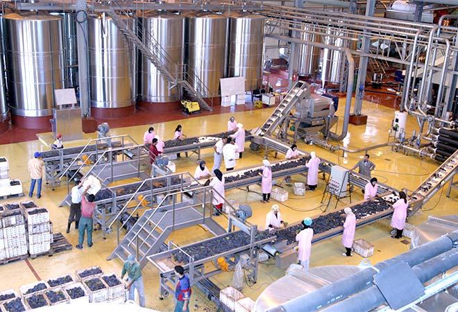 Restructuration cave vinicole Celliers de Meknes triage raisin Maitrise d'oeuvre viticole INGEVIN